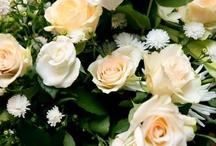 ♥ Peach Weddings | Jevel Wedding Planning ♥