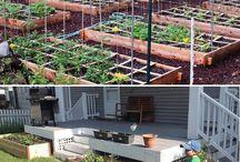 My secret garden / Gardening ideas