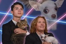 Laser Cat / Honoring the Laser Cat photography we all know and love