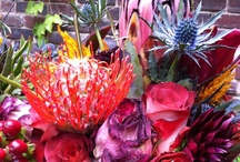 Parties & Vows / Because I believe in celebrating.  And in flowers. An abundance of flowers.