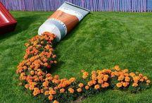 Decoração: Jardins / -