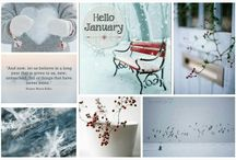winter,lente,zomer en herfst