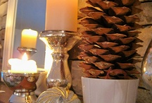 Pine Cones ideas  / Silvertip Tree Farm loves pine cones and natures decor