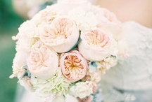 Weddings from Stems / by Jenny AIFD CFD