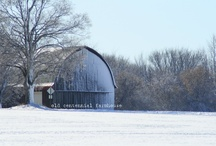 Barns / by Zotti Farm
