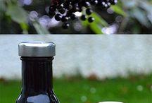 Herbalism/Foraging