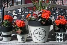 Flower. Pots