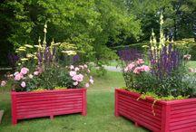 Ekborg Garden Design / Trädgårdsdesign