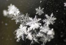 f-f-f-freezing.... / by Mary Beth Burrell