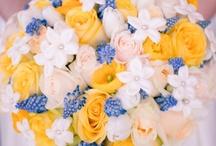 flowers λουλουδια