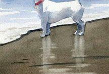 Dogs: Breed Art