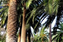 Healthy Living Barcelona / Our Every Second Counts city guide to all things fitness, wellbeing, healthy living and eating in Barcelona