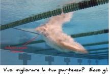 Tecnica del nuoto / Articoli sulla tecnica e l'allenamento del nuoto