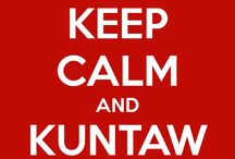 KUNTAW / This is the main Kuntaw board for Kuntaw USA Pinterest!