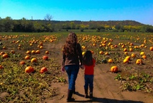 Fall pic ideas  / by Ruby Peters