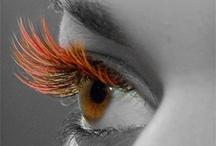 Eyelash Extensions - Lash be long