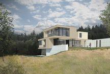 Orono Residence I Peterssen/Keller Architecture / In Progress Design Team: Ted Martin, Lars Peterssen, Gabriel Keller Rendering: Ashley Peterson