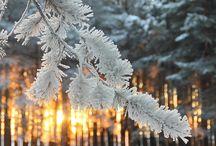 Зима :3 / I love Winter (♡˙︶˙♡)