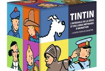 Tintin / Hergé vidéos / We are constantly adding new content to serve our Tintin fans and we will post the info for each DVD as well the Language films available