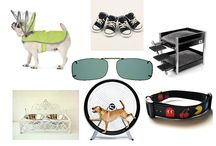 Man's Best Friend and Haven / Your dog and your haven clipons - two wonderful things in your life. www.havenfitsoversunwear.com