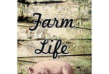 Farm Life Decor / Unique decor. Showcase farm living. Farm life. Life on a Farm. Raising animals. Raise animal. Cow. Sheep. Goat. Pig. Crops. Hardwork.