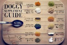 Herbal Pet Health Tips / These are basically beneficial herbs you can add your dog & cat's diet regime!