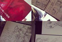 Artbooks and comics collection