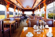 The Blue Train Public areas / While The Blue Train lives up to its five-star reputation in every sense, its cuisine surpasses even the highest expectations. It could be said that dinner will be the most unforgettable experience of your adventure. Call it Cordon Blue. The Club Car offers the feel of a burnished, wood-paneled gentleman's club where you are free to enjoy a Cuban cigar which we serve after dinner to round off a perfect evening.