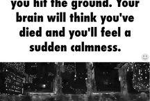 Mind plays...