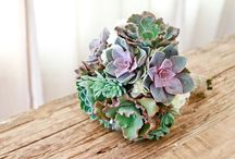 Succulents for Weddings / by Brenda's Wedding Blog