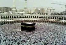 The Last Hajj of Holy Prophet (PBUH) / Hajj performed by Muhammad (PBUH) as 'Hajja-tul-Wada' (The Farewell Hajj). Prophet Muhammad (PBUH) performed .