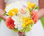 Flowers  / פרחים וצמחים שעושים לנו טוב בעיניים, בלב ובנשמה