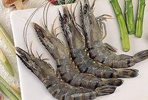 black tiger shrimp / Today, the different types of shrimps available commercially are Pink shrimp, Blue shrimp, Black Tiger shrimp, Fresh water shrimp, Spotted shrimp, Wild shrimp etc.