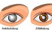 szem egészsége