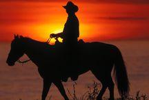 My Heroes have always been Cowboys / My heroes have always been cowboys. And they still are it seems... / by Pamela (AllHoney)