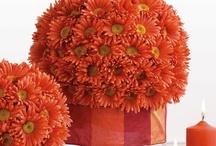 Wedding Ideas - Orange