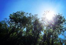 Estate 2014 / Raccolta di immagini di un'estate Calabrese...