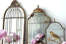 Bird Themed Wedding / by Monarch Weddings
