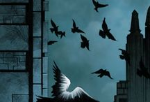 Batman & Catwoman /  ❤ the bat and the cat ❤