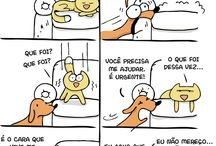 fofuras: cães X gatos