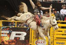PRCA Cowboys