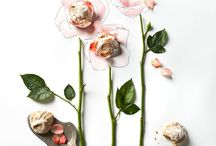 Food styling / Favourite food styling photos