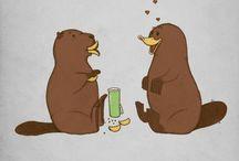 Cute. [animal, fandom, ...]