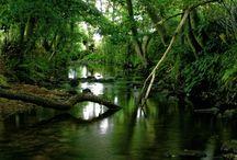 Rios y paisajes