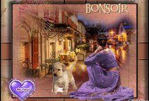BONNE  SOIREE - BONSOIR -