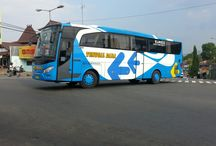 indonesian bus / all about indonesian bus and transportation