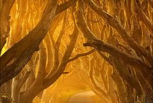 enchanting places