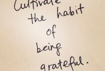 Embrace Gratitude / An assortment of ideas that I like.  That do not define me.