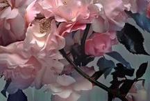 25. Blumen, Bäume & Natur / Halte den Funken des Lichts fest, der aus dem Leben überall da hervorbricht, wo die Ewigkeit die Zeit berührt
