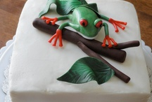 Cake / by Charlotte Duron